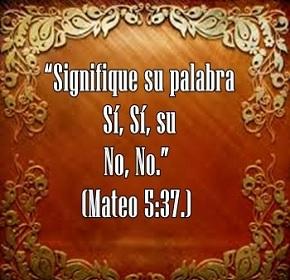 mateo537
