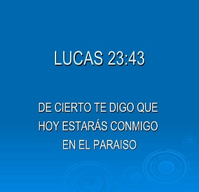 lucas2343