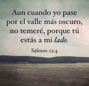 salmo234