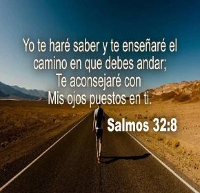 salmo328