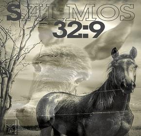 salmo329