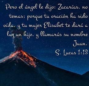 lucas113