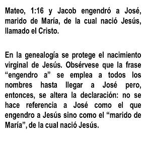 mateo116
