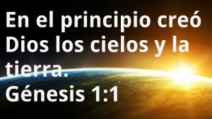 genesis11